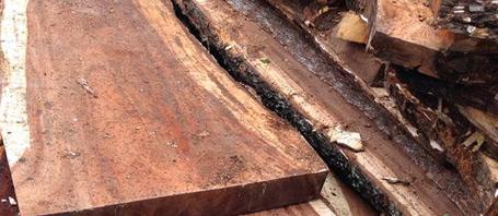 legno di acacia